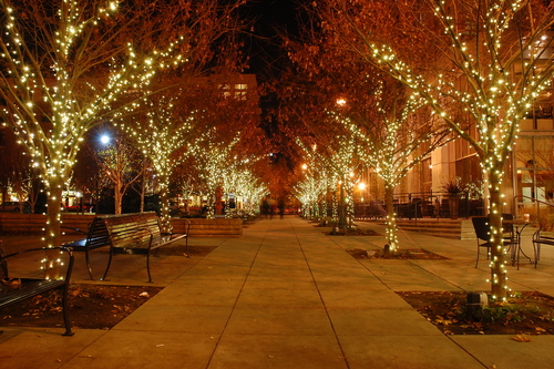 Christmas Decorations And Lights Western Springs Il | Professional ...