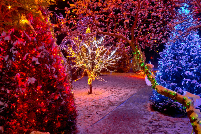 holiday light installation service chicago