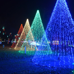 christmas light company hobart in professional christmas light installation company - Christmas Decorating Companies