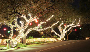top rated large outdoor christmas decorations barrington il put up christmas lights services in and around the chicago suburbs - Professional Outdoor Christmas Decorations